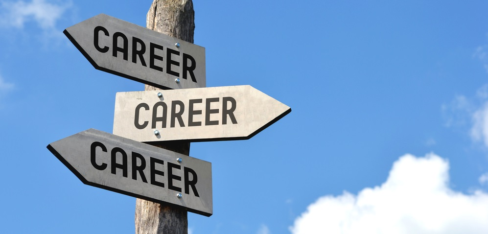 Learn How To Make The Best Decision On A Career Choice